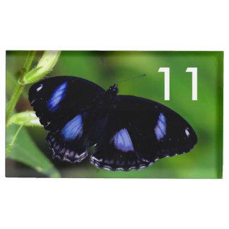 Mariposa gran Eggfly de la luna azul Soportes De Tarjeta De Mesa