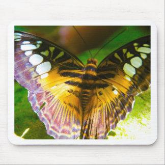 Mariposa grande tapetes de ratones