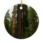 Mariposa Grove in Yosemite National Park Ceramic Ornament