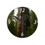 Mariposa Grove in Yosemite National Park Round Clocks