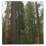 Mariposa Grove in Yosemite National Park Cloth Napkin