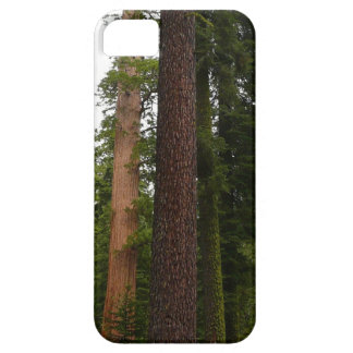 Mariposa Grove in Yosemite National Park iPhone SE/5/5s Case