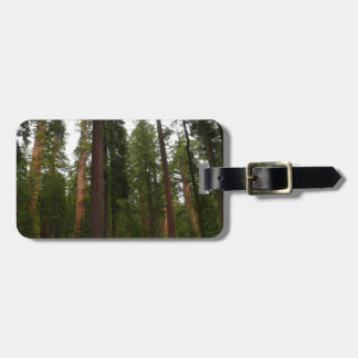Mariposa Grove in Yosemite National Park Luggage Tag