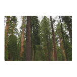 Mariposa Grove in Yosemite National Park Placemat