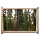 Mariposa Grove in Yosemite National Park Serving Tray