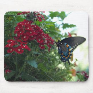 Mariposa hermosa mouse pad
