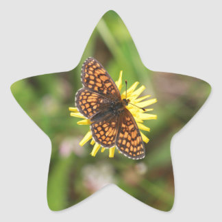 ¡Mariposa - hermosa! Colcomania Cuadrada
