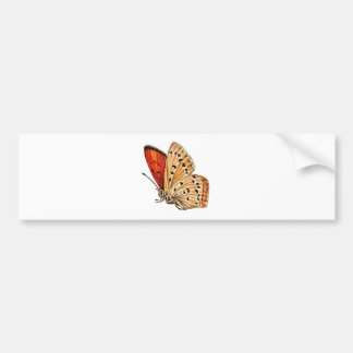 Mariposa hermosa pegatina para auto