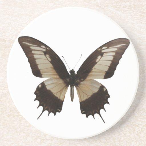 Mariposa hermosa posavasos manualidades