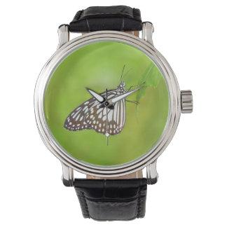 Mariposa hermosa reloj