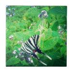 Mariposa hermosa Shenandoah Valley Azulejo Cerámica