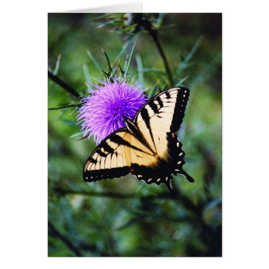 Mariposa hermosa tarjeta de felicitación