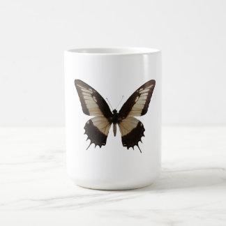 Mariposa hermosa taza de café