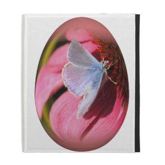 mariposa hilo de araña-coa alas del huevo de Pascu