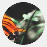Mariposa I Pegatina Redonda