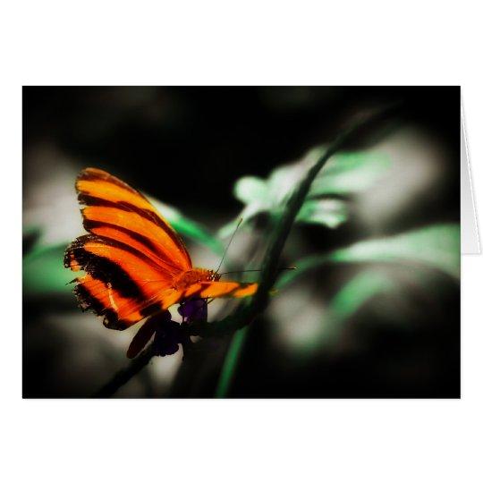 Mariposa I Tarjeta De Felicitación