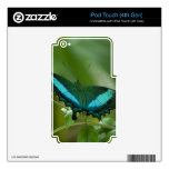 Mariposa imperial iPod touch 4G skins