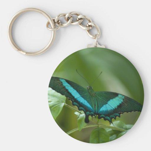 Mariposa imperial llavero