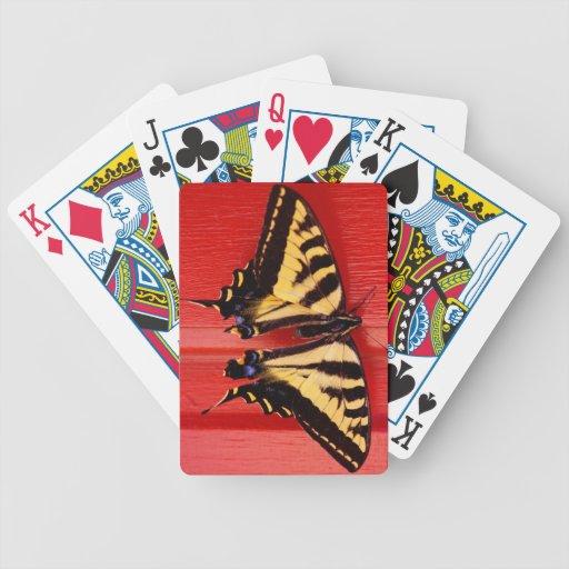 mariposa inusual del swallowtaill del fondo baraja de cartas