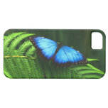 mariposa iPhone 5 Case-Mate cárcasas