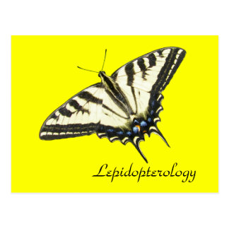 Mariposa Lepidopterology del swallowtail del tigre Postal