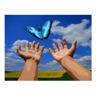 Mariposa libre de Escocia de la postal