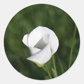 Mariposa Lily Classic Round Sticker