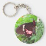 mariposa llaveros personalizados