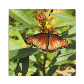 Mariposa manchada posavasos de arce