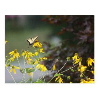 Mariposa, mariposa postal
