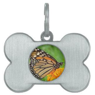 Mariposa Placas De Nombre De Mascota