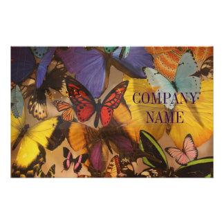 "mariposa moderna colorida femenina de muy buen folleto 5.5"" x 8.5"""
