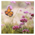 Mariposa - Monarach - la vida dulce Teja Ceramica