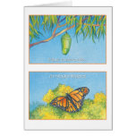 Mariposa Monarca, tarjeta