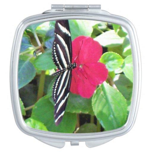 Mariposa negra/blanca en la flor rosada brillante espejos de viaje