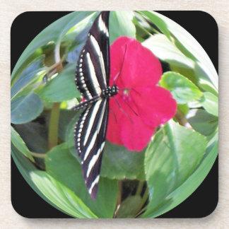 Mariposa negra/blanca y petunia rosada en bóveda posavaso