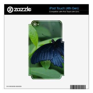 Mariposa negra calcomanías para iPod touch 4G