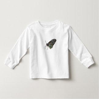 Mariposa negra de la gema playera