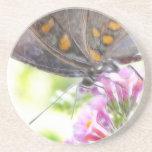 Mariposa negra de Swallowtail en el Buddleia Bush Posavaso Para Bebida