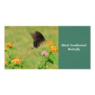 Mariposa negra de Swallowtail Plantilla Para Tarjeta De Foto