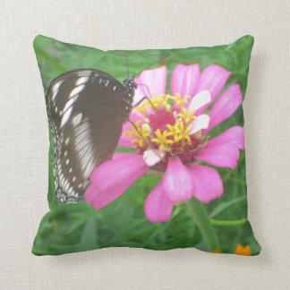 Mariposa negra en la flor rosada cojín