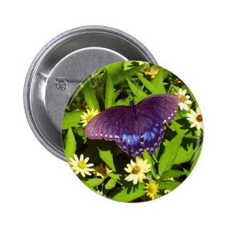Mariposa negra en las flores pin