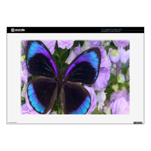 Mariposa negra, púrpura y azul skins para 38,1cm portátil