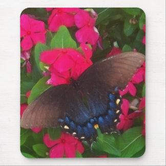 Mariposa negra alfombrilla de ratón