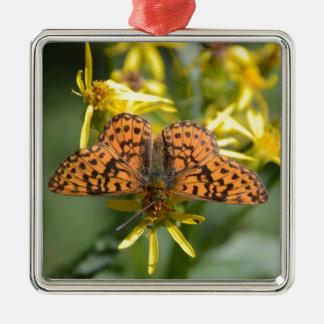 Mariposa negra y anaranjada en las flores adorno cuadrado plateado
