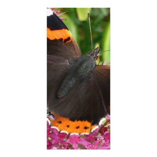 Mariposa negra y anaranjada diseños de tarjetas publicitarias