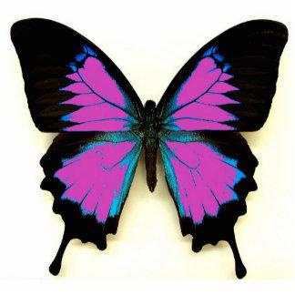 Mariposa negra y azul rosada para un amigo llavero fotográfico