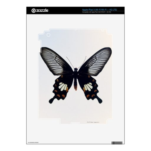 Mariposa negra y marrón iPad 3 pegatinas skins