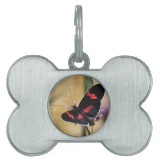 Mariposa negra y roja placas de nombre de mascota