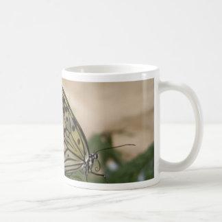 Mariposa negra y translúcida amarilla taza de café